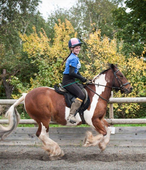 Apples equestrian, Leigh Sinton, Malvern riding lesson
