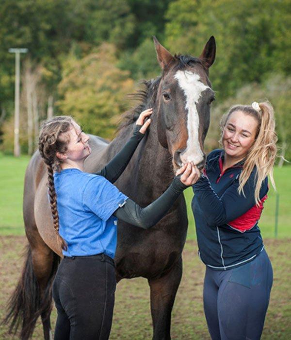 Apples equestrian, Leigh Sinton, Malvern Trekking
