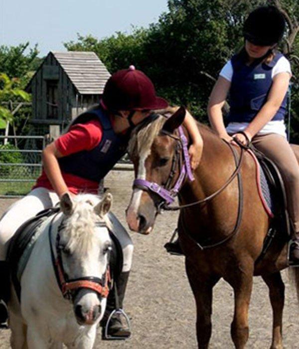 Apples equestrian, Leigh Sinton, Malvern Love horses