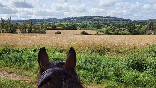 Apples equestrian, Leigh Sinton, Malvern hacking